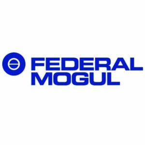 Logo FederalMogul partener ZenDiet